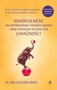 Mindfulness Jak Wytrenować Dzikiego Słonia Jan Chozen