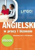 Angielski w pracy i biznesie. Wersja mobilna - Hubert Karbowy - ebook