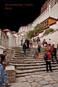 Niewidoczny Tybet - Oser - ebook