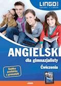 Angielski dla gimnazjalisty. Ćwiczenia. eBook - Agata Mioduszewska, Joanna Bogusławska - ebook