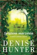 Splątane marzenia - Denise Hunter - ebook